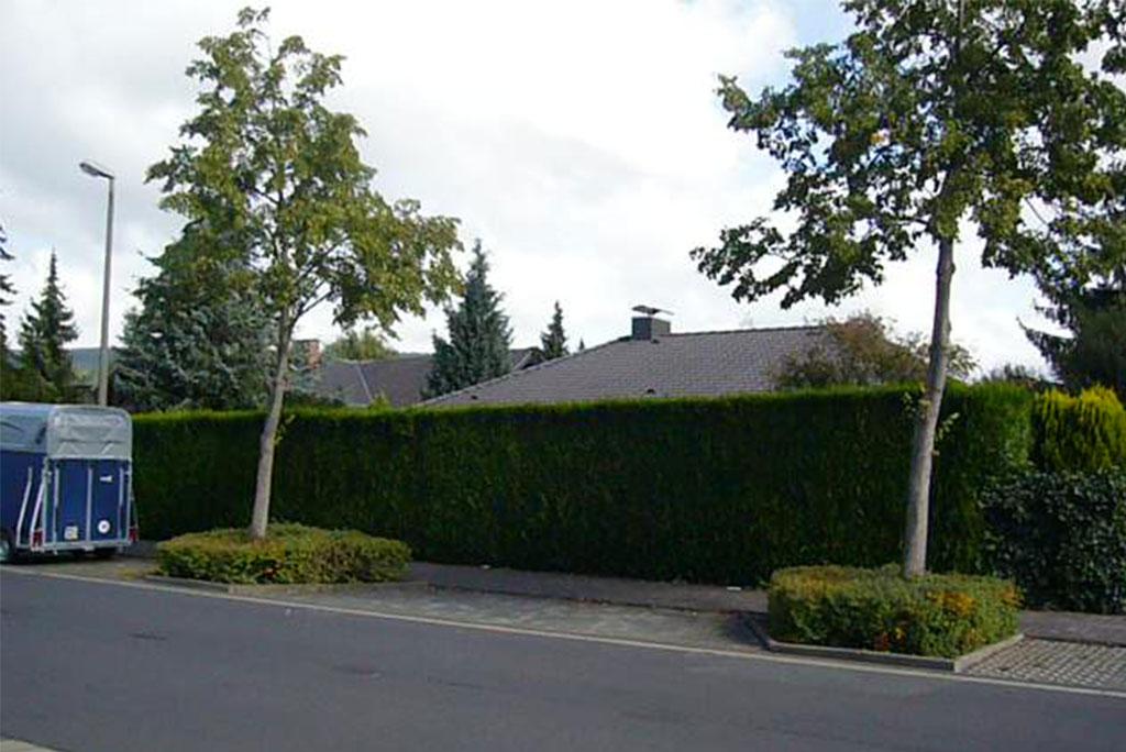 08-001-Aufstockung-Einfamilienhaus-Bad-Homburg-2